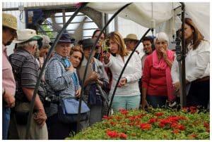 rosales-ferrer-cursos-ponencias