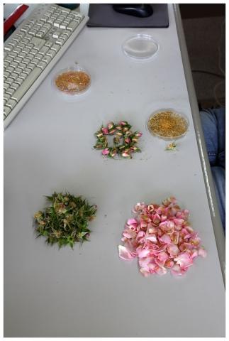 rosales-ferrer-obtencion8
