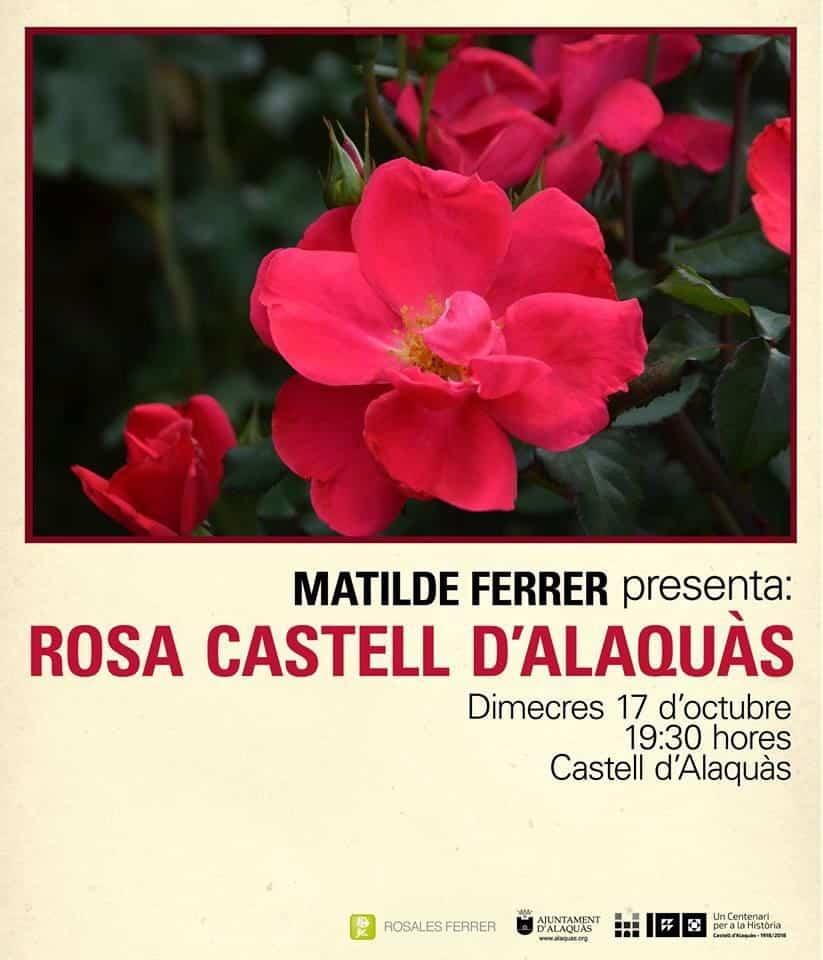 rosalesferrer_castellalaquas